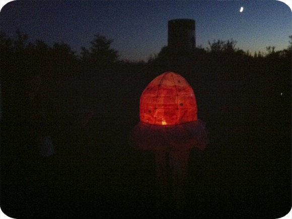 Paper Lantern, Small Pond, Craft, DIY, Prince Edward County, Workshop