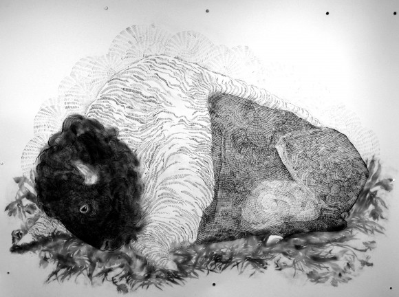 Leah Gold, Drawing, Artist in Residence, Animal, Illustration, Black and White