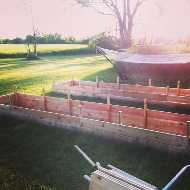 Garden, DIY, Raised Beds, Vegetables, Summer, Rural