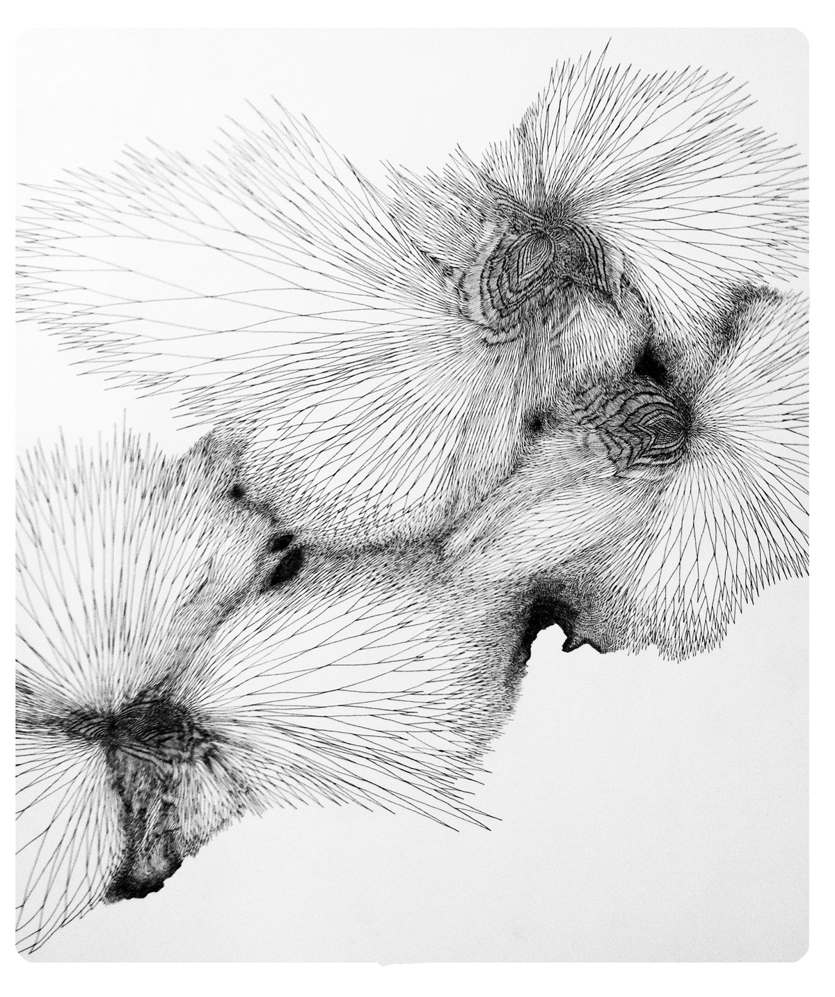 RoGallery Hans Georg Rauch, Etching - Drawings And Illustrations ...