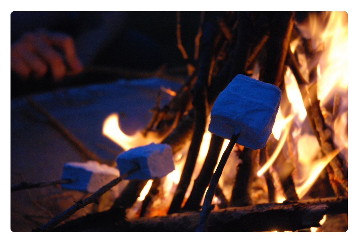Marshmallows, Camp Fire, Food, Homemade, Friends, Summer