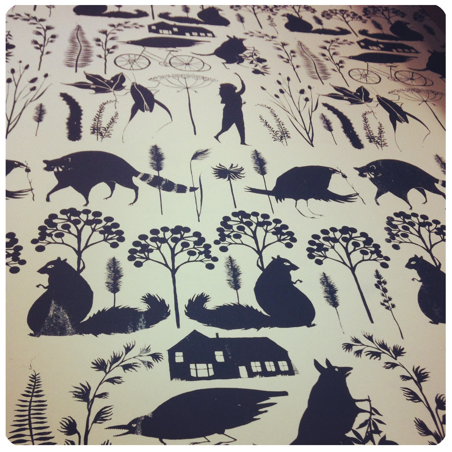 Zosia Gibbs, Print, Silkscreen Pattern, Animals, Raccoon, Squirrel, Crow, Artist in Residents